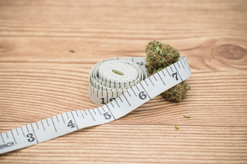 How to Measure Weed Without a Scale? - Find Different Ways