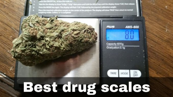 Best Drug Scales Top Rated Scales For Weed