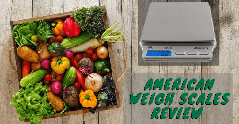 American Weigh Scales review