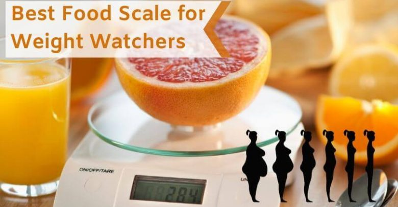 Best Food Scale for Weight Watchers