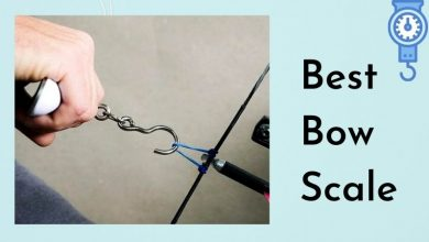Best Bow Scale
